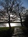Part of the path around Rutland Water - geograph.org.uk - 1067390.jpg