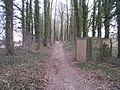 Path through the woods - geograph.org.uk - 1748077.jpg