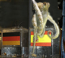 Paul the Octopus 1.jpg