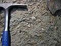 Pedogenic breccia (Conemaugh Group, Upper Pennsylvanian; creek cut on the western side of Caldwell, Ohio, USA) 11.jpg