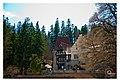 Peles Castle - panoramio (8).jpg