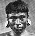Peruvian Indian Mongoloid.png