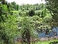 Pervomaysky District, Tomsk Oblast, Russia - panoramio (21).jpg