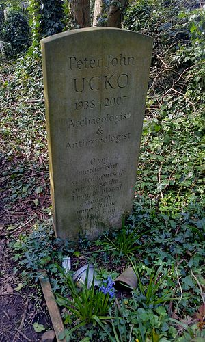 Peter Ucko - Ucko's grave in Highgate Cemetery, North London