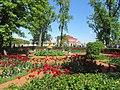 Peterhof - panoramio (5).jpg
