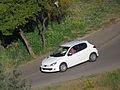 Peugeot 206 1.6 X-Line 2008 (10750764143).jpg
