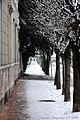 Piave, Cuggiono - panoramio - tampe (1).jpg