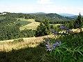 Pieninen - Blick am Osten - panoramio.jpg