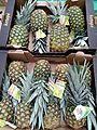 Pineapples19092016.jpg