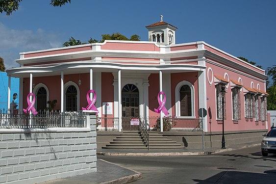 Pink Cancer Ponce 336.jpg