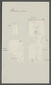 Planaria fusca - - Print - Iconographia Zoologica - Special Collections University of Amsterdam - UBAINV0274 105 09 0024.tif