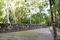 Poetén Campechan, Calakmul, Campeche (22186721952).jpg