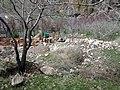 Poghos-Petros Monastery 191.jpg