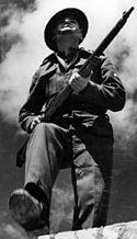 Polish Carpathian Brigade soldier