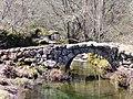 Ponte de Dorna 1424.jpg