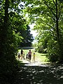 Portage Park trail to Thetis Cove. READ INFO IN PANORAMIO-COMMENTS - panoramio.jpg
