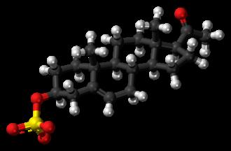Pregnenolone sulfate - Image: Pregnenolone sulfate anion ball