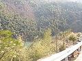 Pujiang, Jinhua, Zhejiang, China - panoramio (14).jpg