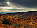 Purple-Mountain-Majesty - Virginia - ForestWander.jpg