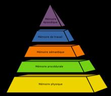 Refoulement de la mémoire dans Nouvelle conscience 220px-Pyramide_des_memoires