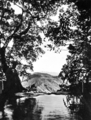 Queensland State Archives 2163 The pool above Widgee Falls Mcpherson Range c 1945.png