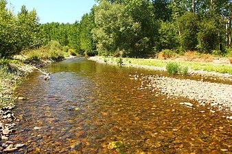 Río Tirón en la provincia de Burgos.jpg