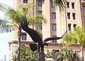 RAAF-Memorial-Eagle.jpg