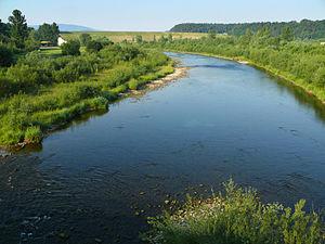 Raba (river) - The Raba near Dobczyce
