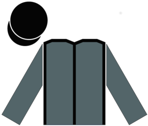 Champion (horse) - Racing Silks of Christopher Wilson