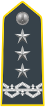 Rank insignia of generale di corpo d'armata of the Guardia di Finanza.svg