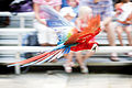 Red Macaw Flying in Front of Crowd (19654959013).jpg