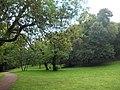 Reichardtsgarten2.JPG