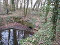Remains of Park Leaze Bridge - geograph.org.uk - 1206819.jpg