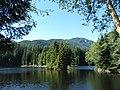Rice Lake (9381275672).jpg