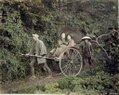 Rickshaw (Jinricki), 1860 - ca. 1900.jpg