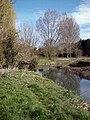 River Chelmer, Broomfield - geograph.org.uk - 364246.jpg