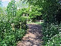 River Ching footpath 06, South Chingford, Waltham Forest, London, England.jpg