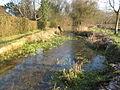 River Lambourn at Woodspeen - geograph.org.uk - 1657148.jpg