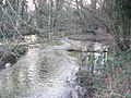 River Test - geograph.org.uk - 700223.jpg