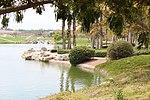 Riverside National Cemetery Under Trees.jpg