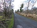 Road at Magheravail - geograph.org.uk - 1771672.jpg