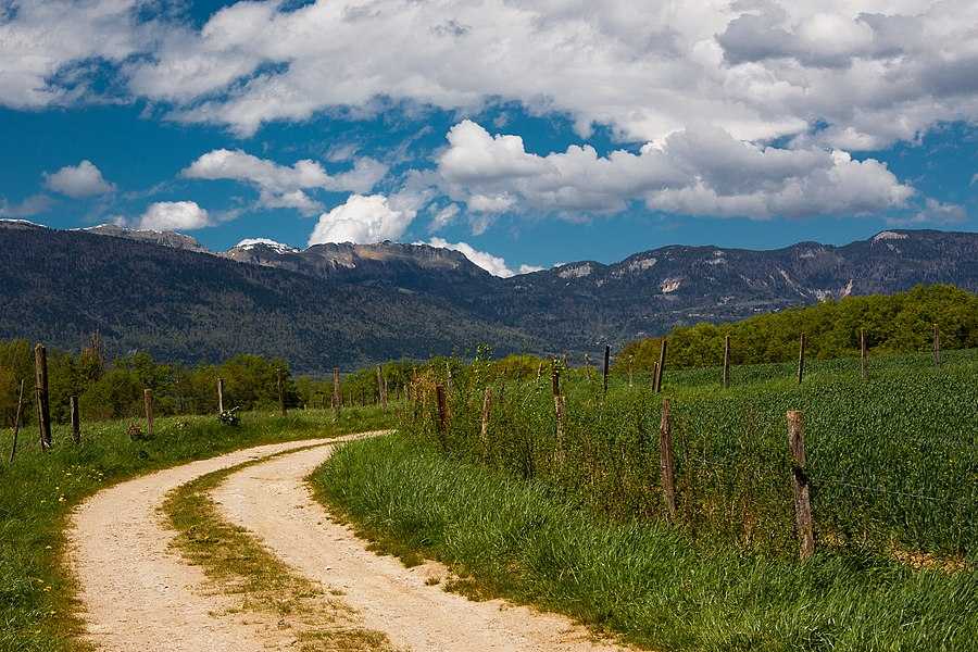 Road to the Jura