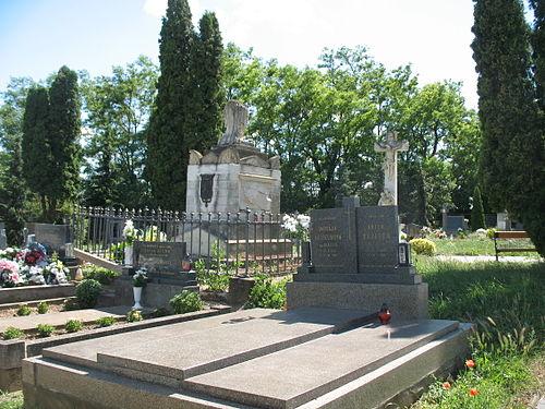 Románfalva Esterházy sír 1.JPG