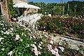 Rose garden of Ryosenji Nara Japan13s3.jpg