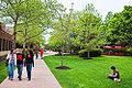 Ru-camden-campus walk.jpg