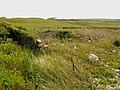 Ruined boat shelter - geograph.org.uk - 450697.jpg