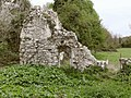 Ruins of Ankerwycke Priory, near Wraysbury - geograph.org.uk - 2360723.jpg