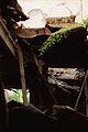 Ruins of a house (2000).jpg