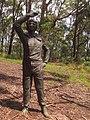 Rumbalara Reserve - panoramio (17).jpg