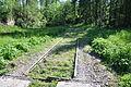 Sázava(ZR)-staré-koleje2010.jpg